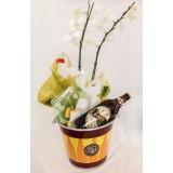 Orquídea com Dama Biers