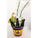 Orquídea com Framboise Max